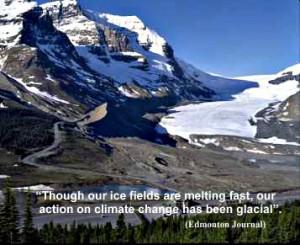 Ice field PFMJ